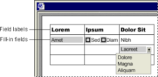 Form Microsoft Word Making Forms With Microsoft Word