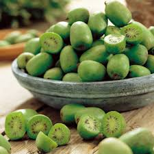 En Couleurs Imprimer Nature Fruits Kiwi Num Ro 684891