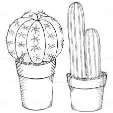 Hand Getekend Set Of Cactus En Vetplanten In Potten Doodles Zwartwit