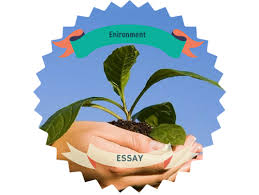 environment essay outline for the creation of the best work best  what is an environment essay outline