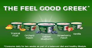 dannon introduces new activia greek