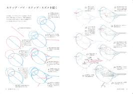 鳥の描き方マスターブック ジョンミューアローズ 森屋利夫 本