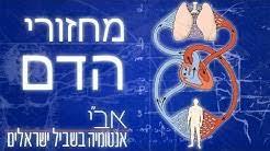 אבי אנטומיה בשביל ישראלים - YouTube