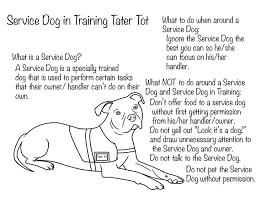 Small Picture What Every Child Needs to Know About Service Dogs PLUS a Fun Way