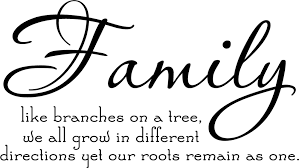 Quotes About Family And Love Beauteous Family Tree Together Love Wall Vinyl Sticker Decal Quote Decor Cute