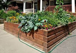 7 raised garden tricks everyone should