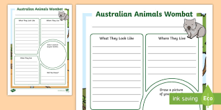 Australian Animals Wombat Information Report Writing Template