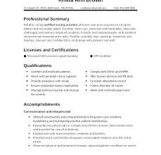 Pl Sql Developer Resume Sample Pl Developer Cover Letter Sample Simple Sql Developer Resume