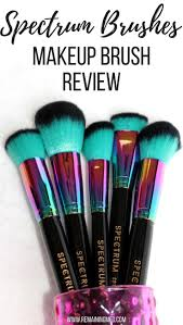 spectrum brushes a makeup brush review remaining meg spectrum collection makeup brushes are free