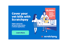 Maybe you would like to learn more about one of these? Scratchpay Simple Friendly Payment Plans For Medical Financing