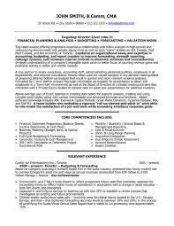 Marvelous Decoration Finance Director Resume Sample Finance Manager