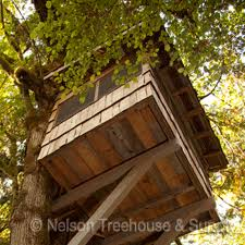 Treehouses Highend Style Goes Out On A Limb  Home Improvement Pete Nelson Treehouse Man