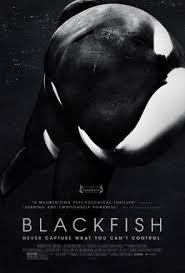 <b>Blackfish</b> (film) - Wikipedia