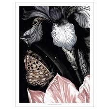 <b>ПЬЕТТЕРИД Картина</b>, Бабочка купить онлайн в интернет-магазине