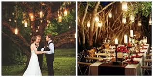 Hanging Lights from a tree wedding pics | but just the lights and some  lights strung