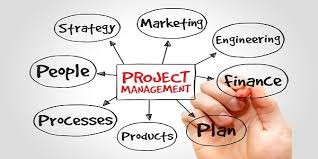 Project Management Assignment Help Instant Assignment Help