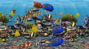 Akvaryum 3d Fish 3d Fish Aquarium ...