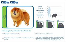 Wisdom Panel Pet Testing Reviews Dna Testing Choice