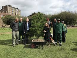 The Council Is Planting 100 New Trees For Hackneys Parks