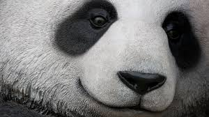 Google <b>Panda</b> Update | Search Engine Land Explains the Google ...