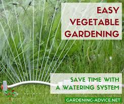 watering systems save time in the garden gardening gardeningtips permaculture homesteadgarden