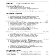 Server Objective Resume Objective For Server Resume Restaurant