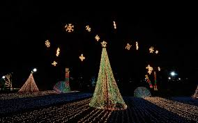 christmas tree lighting chicago. Best Places For Christmas Lights Tree Lighting Chicago
