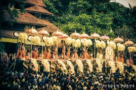 photo essay and my top travel tips for tropical kerala  thrissur pooram festival travel photographer andrew adams