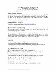 New Resume Examples Accountant Resume Examples New Latest Sample Of Resume List 39