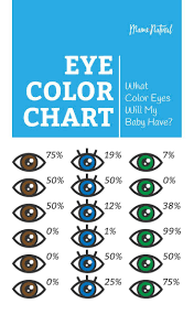 Baby Food Color Chart Eye Color Chart What Color Eyes Will My Baby Have Baby