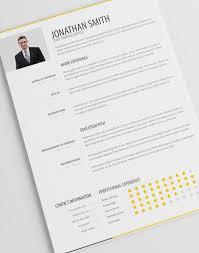 pro cv template simple resume template vol 1