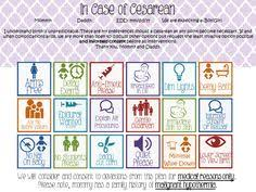 Visual Birth Plan Icons 131 Best Birth And The Labor Process Images Birth Affirmations