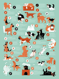 Dogs Alphabet Dog Poster Dogs Cat Facts Text