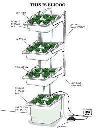 how to build indoor hydroponic gardens