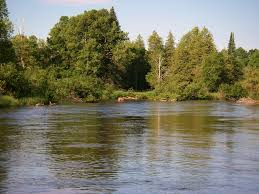 Manistee River Flow Chart Fly Fishing The Upper Manistee River Current Works Guide