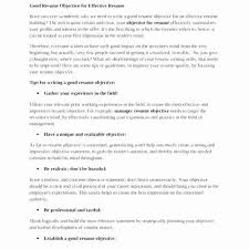 Good Objective For Resume Inspiration Objective For Resume For Freshers Magnificent Good Objectives For
