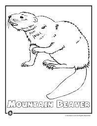 Small Picture Coloring Pages Of North American Animals Coloring Pages