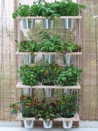 herb garden in kitchen indoor planters