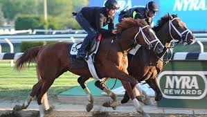 2015 Belmont Stakes Chart Predicteform Coms Upset Watch Belmont Breakout Candidate