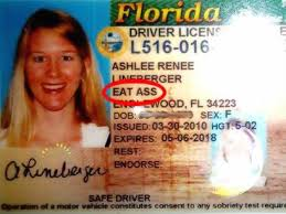 Is Weirdest Florida – The Officially This True