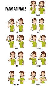 Baby Sign Language Australia Free Printable Chart Google