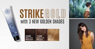 Professional Hair Color Distributors