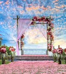 outdoor backgrounds. Contemporary Backgrounds 2018 Beautiful Sky Clouds Outdoor Scenic Summer Beach Wedding Backdrops  Vinyl Romantic Pink Petals Carpet Red Roses Photography Studio Background From  To Backgrounds