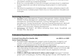 Profile For Resume Sumptuous Design How To Write A Profile For