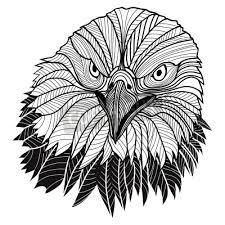 Fototapeta Bird Orel Bělohlavý Hlava Jako Symbol Pro Americký Maskot Nebo