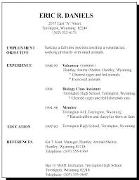 Good First Resume Examples