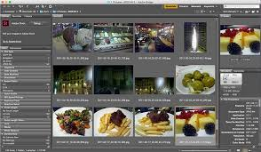 Free Foto Album The Best Photo Album Software To Use On Windows 10 Windows