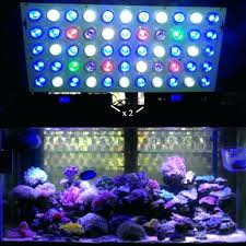 reef tank led lighting hours t5 schedule aquarium times revised