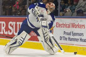Marlies Ray Emery Fights To Keep Career Alive The Star