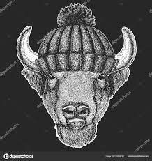 милые животные нося вязаная зимняя шляпа буффало бизон бык бык